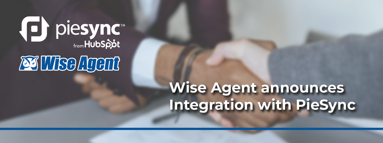 Wise Agent Brand Guide